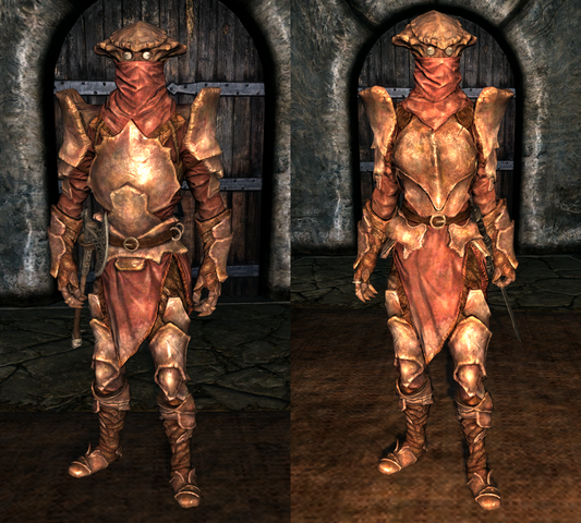 File:Heavy Chitin Armor - Both.png