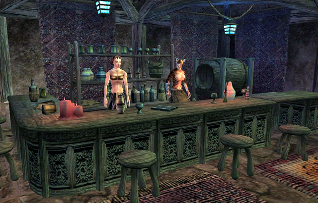 File:Desele's House of Earthly Delights Bar Area.png