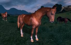 Wild Chestnut Horse.png