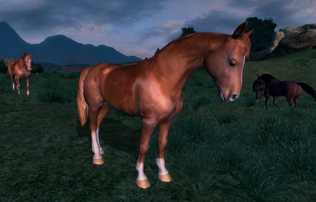 File:Wild Chestnut Horse.png
