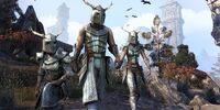 Nedic Warrior Pack