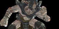 Falmer Nightprowler