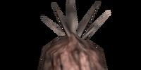 Ash Yam (Morrowind)