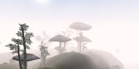 Elmas Island
