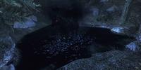 Shadowmere (Skyrim)