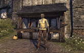 Guild Store (Western Trading Inc)
