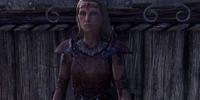 Housecarl Nelmryn