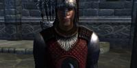 Skingrad Soldier (Oblivion)