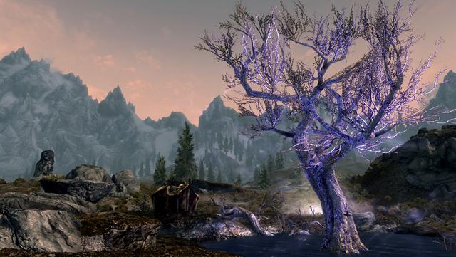 File:TESV The Sleeping Tree.png