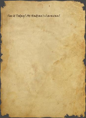 File:Spikeball Handbill 2 of 2.png