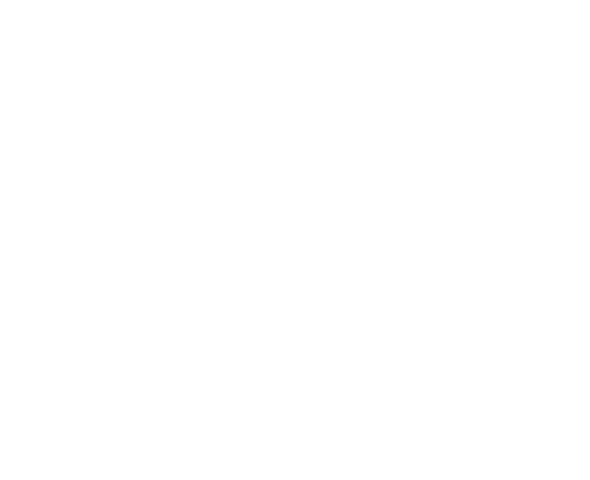 Fichier:Archer icon.png