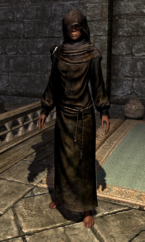 File:Hooded Black Robes 000107108.png