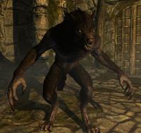 SkyrimWerewolf