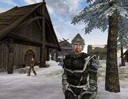 Engar Ice-Mane Screenshot