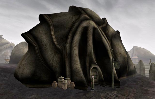 File:Ald'ruhn, Mages Guild.png