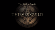 The Elder Scrolls Online Thieves Guild Wide Cover