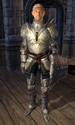 Fighters Guild Porter Skingrad