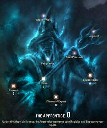 The apprentice tree
