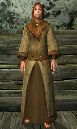 Robe of Warding