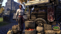 Nuzhimeh the Merchant