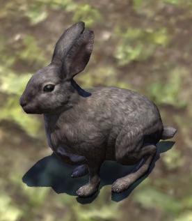 File:Rabbit (Online).png