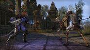 Khajiit fighting skeletons ESO