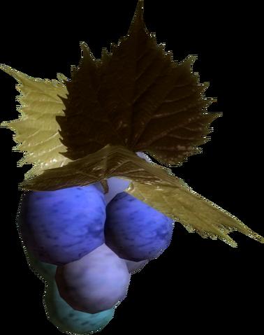 File:Jazbay grapes skyrim.png