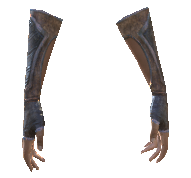 File:Guardian's Gauntlets.png