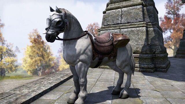 File:Imperial White Horse.jpg