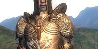 Blackwood Armor