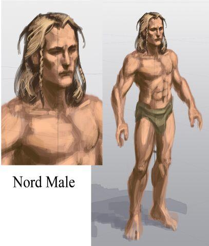 Fichier:Nord Male 3.jpg