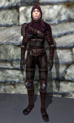 DarkBrotherhoodShrouded Armor
