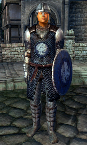 File:Chorrol Soldier.png