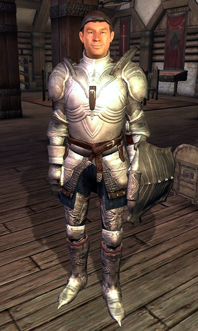 File:Fighters Guild Porter Bruma.png