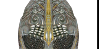 Helmet of Magicka Resistance