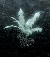 Glowing Nirnroot Skyrim