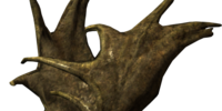 Large Antlers