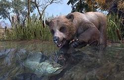 Cave Bear Cub
