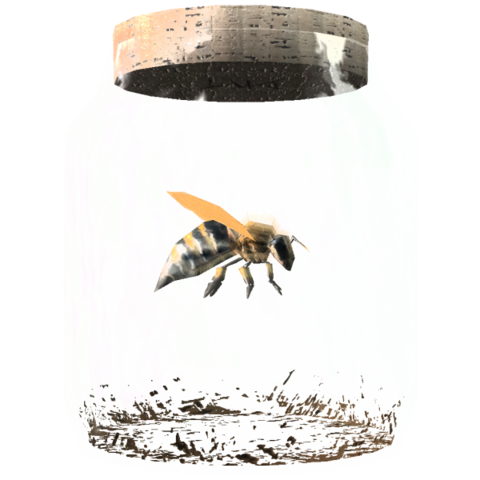 File:TESV Bee In A Jar Crop.png