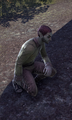 Thumbnail for version as of 02:48, January 21, 2016