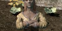 Synda Llanith