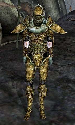File:Redoran Guard (Morrowind).png