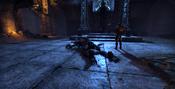 The Banished Cells Skeletal Destroyer