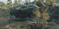Wild Animal Den: Shor's Stone