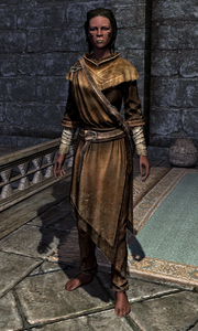 Adept Robes 00010CEE3