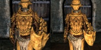 Improved Bonemold Armor (Armor Piece)