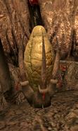 FleshyPod01