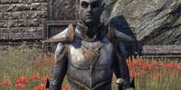 Sergeant Malni