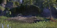 Nindaeril's Perch