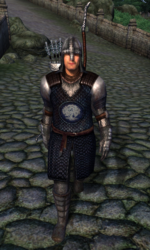 TESIV Guard Chorrol 1